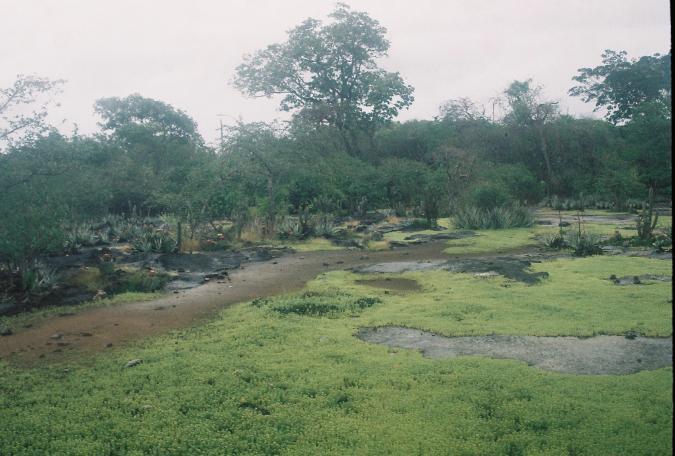 Parque Mata Seca